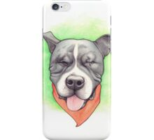 LOVE IS BLIND - Stevie the wonder dog iPhone Case/Skin