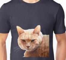 Red cat watching Unisex T-Shirt