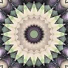 Web Of Dreams Mandala by SexyEyes69