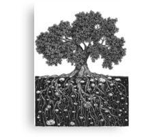 The World Below Canvas Print