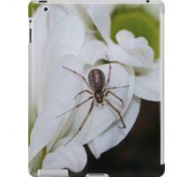 Spider Chrysanthemum iPad Case/Skin