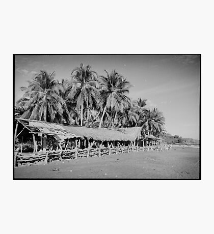 Palm Trees on Tropical Beach Shot on Black and White Film Photographic Print