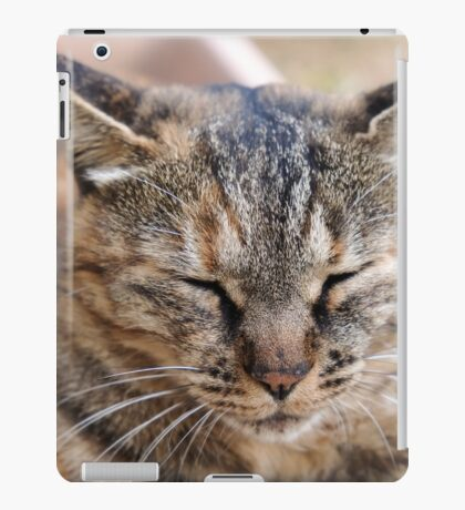 Tabby the Kitty iPad Case/Skin