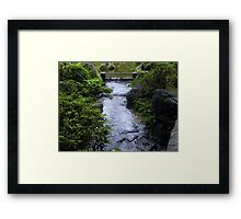 Kyoto: The Sound of Silence Framed Print