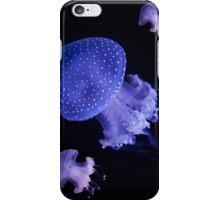 Australian spotted jellyfish iPhone Case/Skin