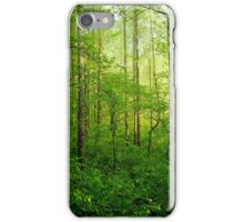 The Woods of Higher Ground iPhone Case/Skin