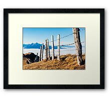 View on Central Swiss Alps on Sunny Foggy Winter Day Framed Print