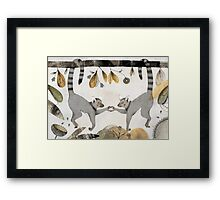 Lemurs In Love Framed Print