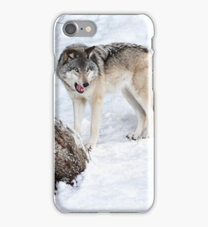 Mmm, that human tasted good - Timber wolf! iPhone Case/Skin
