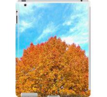 Orange & Blue Make Fall iPad Case/Skin