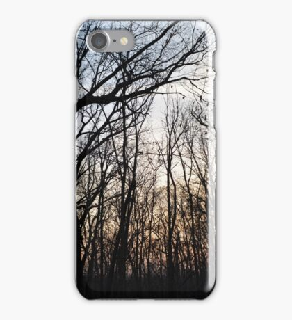 Twilight Woods iPhone Case/Skin