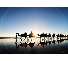 The Camels Photographic Print