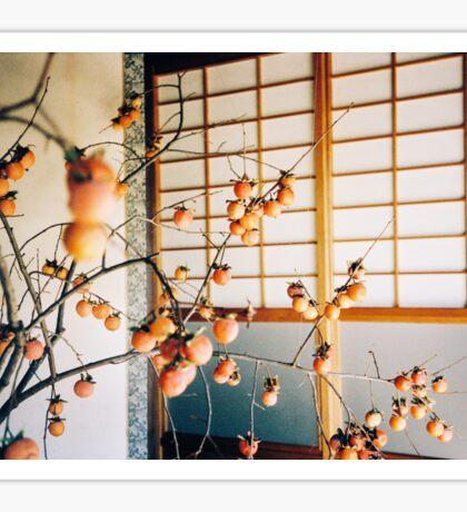Persimmon Branches Ikebana Shot on Porta 400 Shot on Porta 400 Sticker