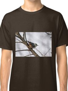 Perched Nuthatch Classic T-Shirt
