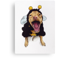Tuna - bee costume Canvas Print