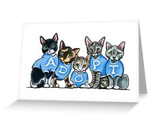 Adopt Shelter Cats Greeting Card