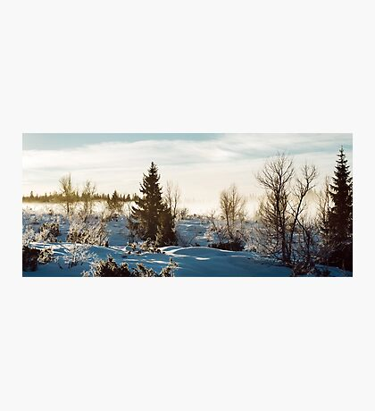 White Scandinavian Winter Landscape With Mysterious Fog on Sunny Photographic Print
