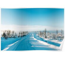 Blue Scandinavian Winter Landscape With Mysterious Fog on Sunny Cold Day Poster