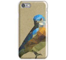 LP Bird iPhone Case/Skin