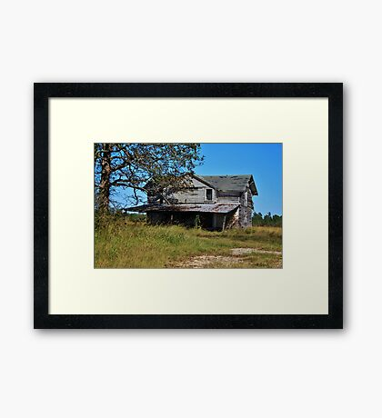 Empty Shell Framed Print