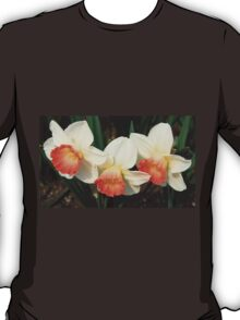 Three White Daffodils with Orange T-Shirt