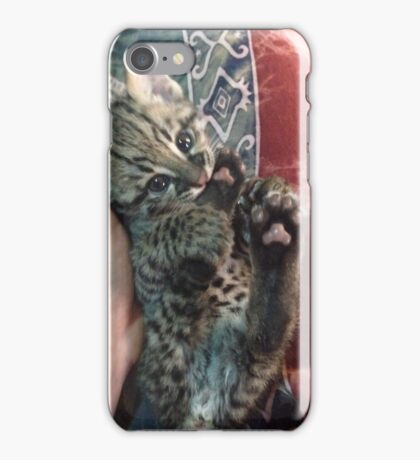 Geoffroy's Cat Kitten iPhone Case/Skin