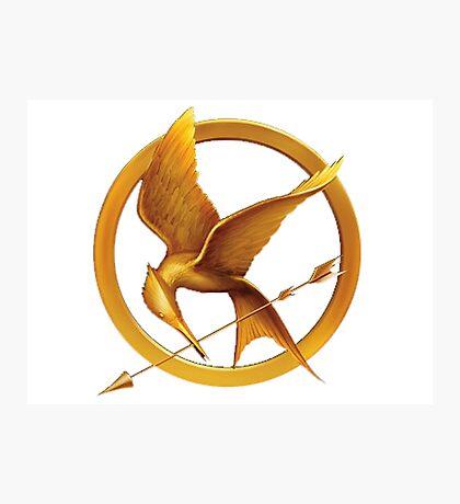 Hunger Games - Mockingbird Photographic Print
