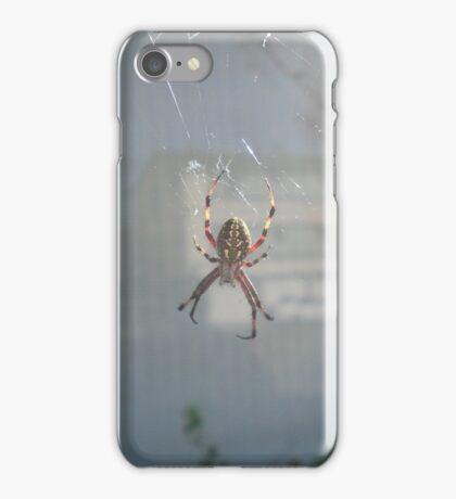 Spider In A Web  iPhone Case/Skin
