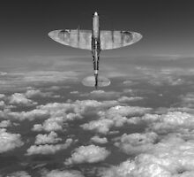 A cut above, black and white version by Gary Eason + Flight Artworks