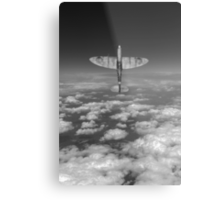 A cut above, black and white version Metal Print