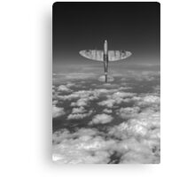 A cut above, black and white version Canvas Print