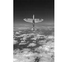 A cut above, black and white version Photographic Print