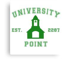 Fallout - University Point Canvas Print