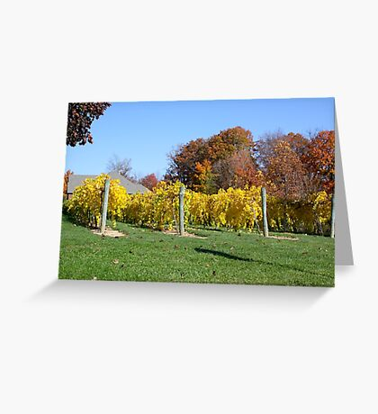 THE VINEYARD IN OCTOBER Greeting Card