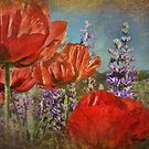 Poppies and Lupine by kayzsqrlz