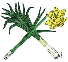 Leek and Daffodil Crossed by Richard Fay