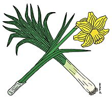 Leek and Daffodil Crossed Photographic Print