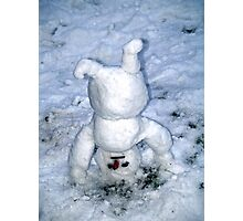 Funny snowman Photographic Print
