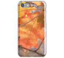 The Color Of Autumn  iPhone Case/Skin