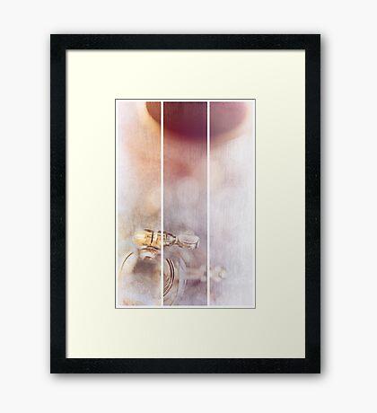Sanborn (experienced) Framed Print