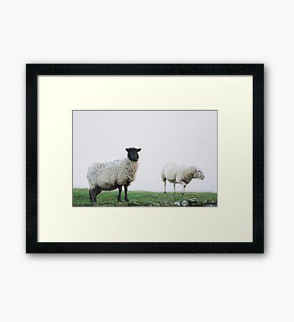 Harshness of winter on the moors Framed Print