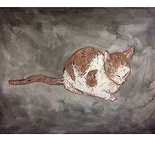 Meow by Chloé Arzuaga