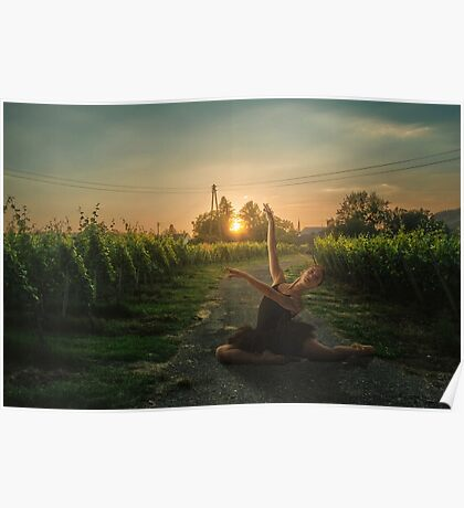 Framing sunset Poster