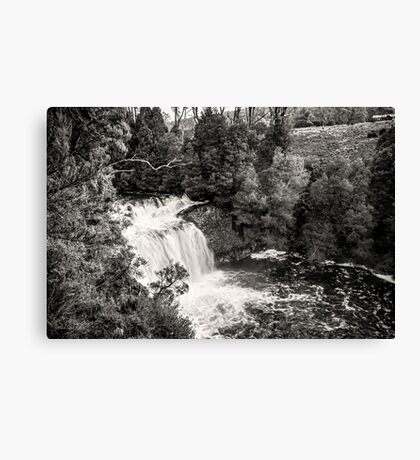 Pencil Pine Falls, Cradle Mountain, Tasmania, Australia Canvas Print