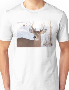 White-tailed deer buck in the winter snow T-Shirt