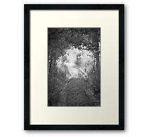 Woods #01 Framed Print