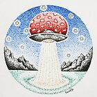 Flying Agaric by SassoJo