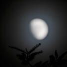 """ Lunar Halo "" by Richard Couchman"