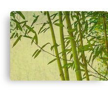 Zen bamboo abstract pattern with retro grunge feel Canvas Print