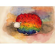 Nyan Sheep Photographic Print